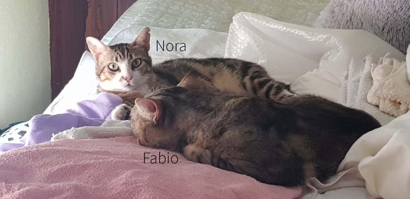 Fabio und Nora 04.07.21