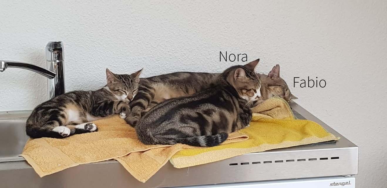 Fabio und Nora 17.08.21 (1)